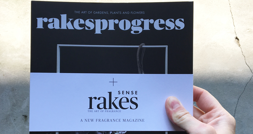Blogpost-Rakesprogress